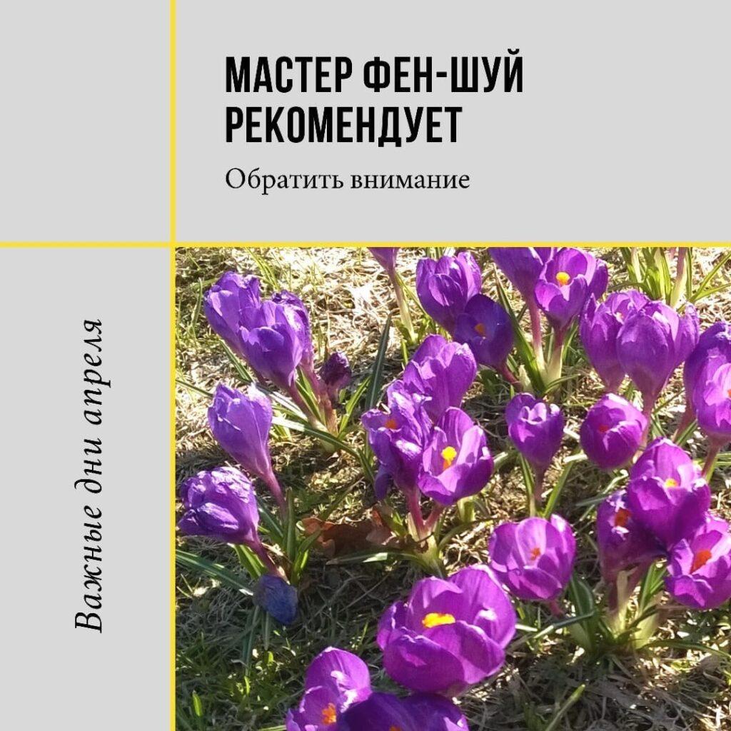 Месяц Водяного Дракона с 5 апреля по 4 мая более благоприятен и гармоничен по сравнению с предыдущими.